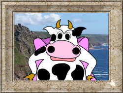Dynamoo at the Cornish coast